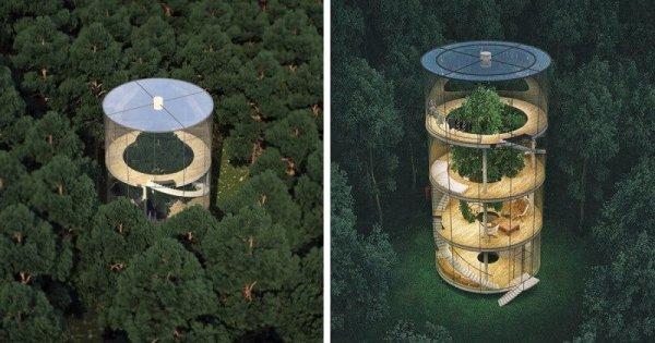 Экологические чистое место и дом: Казахский дизайнер спроектировал невероятный стеклянный дом